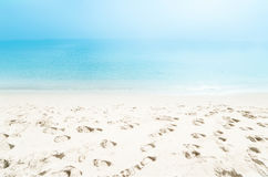 Предпосылка/летний день пляжа рая тропические Стоковые Изображения RF