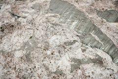 Предпосылка ледника стоковые фото