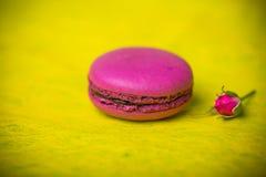 Предпосылка еды macaroon цвета весны ягоды Стоковые Фотографии RF