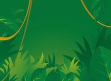 Предпосылка джунглей с copyspace Стоковые Фотографии RF