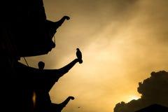 Предпосылка захода солнца Стоковое Изображение RF