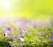 Предпосылка зеленого цвета весны искусства абстрактная Стоковые Изображения