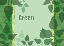Предпосылка зеленого цвета выходит к зоне для записи текста Стоковое Фото