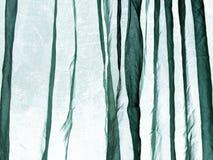 Предпосылка зеленого цвета занавеса маркизета Стоковое Изображение