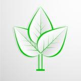 Предпосылка зеленого eco дружелюбная - абстрактная бумага Стоковые Фото