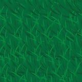 Предпосылка зеленой травы вектора Стоковое фото RF