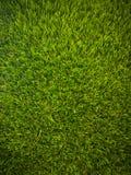 Предпосылка зеленой травы Стоковые Фотографии RF