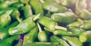 Предпосылка зеленых перцев - текстура зеленого перца, chili Стоковое Изображение
