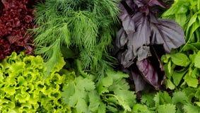 Предпосылка зеленых цветов Стоковые Фотографии RF
