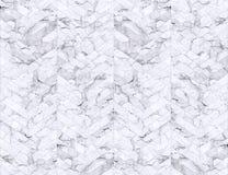 Предпосылка зигзага Шеврона сделанная по образцу мрамором черно-белая Стоковое Изображение