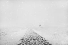 Предпосылка зимы рождества с снегом и деревьями Стоковые Фотографии RF