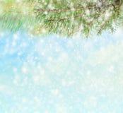 Предпосылка зимы с ветвями елевых дерева и снега Стоковое Изображение RF