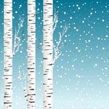 Предпосылка зимы с деревьями и снежинками березы Стоковые Изображения