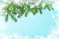 Предпосылка зимы с рождественской елкой Чисто холодное утро Chri Стоковые Фото