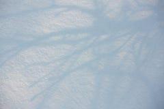 Предпосылка зимы с трассировками Стоковое Изображение RF
