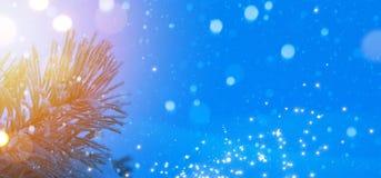 Предпосылка знамени праздников рождества Стоковая Фотография RF