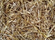 Предпосылка золотой коричневой соломы Стоковые Фотографии RF