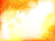 Предпосылка дизайна осени с листьями Стоковые Изображения