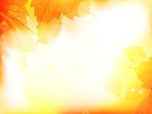 Предпосылка дизайна осени с листьями Стоковое Изображение RF