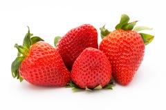 предпосылка изолировала белизну клубники ягода свежая Стоковые Фото