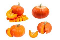 предпосылка изолировала белизну тыквы Свежие и оранжевые тыквы Стоковые Фото