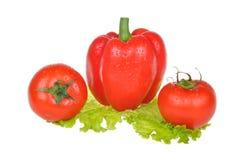 предпосылка изолировала овощи белые Стоковая Фотография