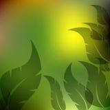 Предпосылка листьев, зеленых и желтых Стоковые Изображения RF