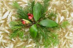 Предпосылка листьев и хворостин Стоковые Изображения