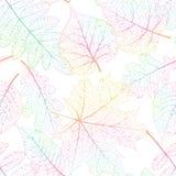 Предпосылка лист безшовная абстрактная 10 eps Стоковая Фотография RF