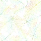 Предпосылка лист безшовная абстрактная 10 eps Стоковые Фотографии RF