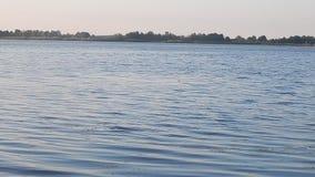 Предпосылка и ландшафт панорамы реки сток-видео