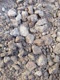 Предпосылка и текстура почвы Стоковая Фотография RF