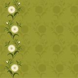 Предпосылка/картина с цветками Стоковое Изображение RF