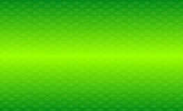 Предпосылка картины винтажного зеленого цвета рамки орнаментальная Стоковая Фотография