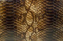Предпосылка картины кожи змейки Стоковое Изображение