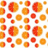 Предпосылка картины кусков апельсина и грейпфрута безшовная Стоковые Фото
