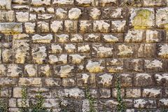 Предпосылка кирпичной стены Стоковое Изображение RF