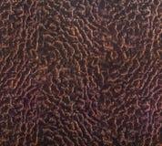 Предпосылка кожи овечки Стоковое фото RF