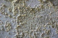 Предпосылка конкретная поверхность mouldy Стоковое Фото