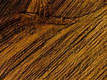 Предпосылка конспекта текстуры Брайна деревянная Стоковая Фотография RF