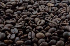 Предпосылка конца-вверх кофейных зерен Стоковое фото RF