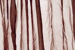 Предпосылка коричневого цвета занавеса маркизета Стоковые Фото