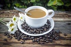 Предпосылка кофе горячая Стоковые Фотографии RF