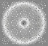 Предпосылка красивого круга серая светлая флористическая Стоковое Изображение