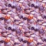 Предпосылка красивых каникул моря лета безшовная с камешками и раковиной пляжа Красочные камешки на пляже Стоковые Фотографии RF