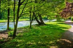 предпосылка красит желтый цвет свежей зеленой весны прачечного белый Стоковое Изображение RF