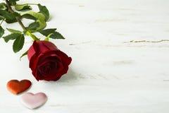 Предпосылка красной розы дня валентинок Стоковое Фото