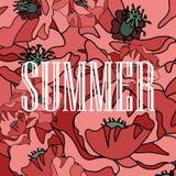 Предпосылка красных маков с летом слова Стоковые Изображения