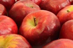 Предпосылка красных яблок стоковая фотография rf