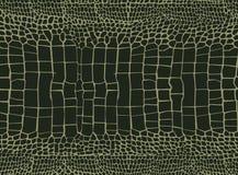 Предпосылка крокодиловой кожи Стоковая Фотография RF